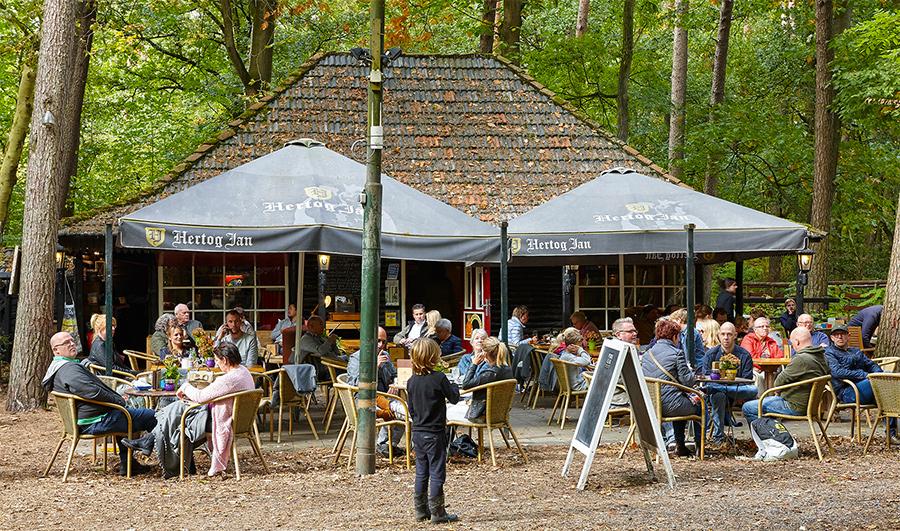 Natuurtheater Oisterwijk met Feestlocatie De Rode Lelie Oisterwijk
