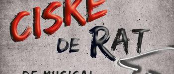 Afbeelding bij V.O.S. presenteert Ciske de Rat