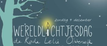 Afbeelding bij Wereldlichtjesdag Oisterwijk