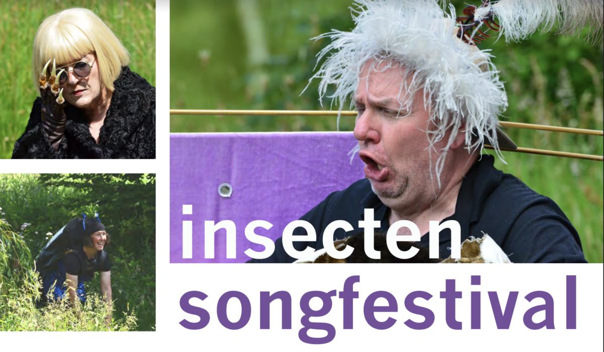 Insectensongfestival Natuurtheater Oisterwijk